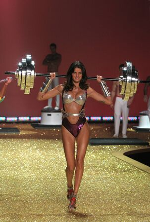 NEW YORK - NOVEMBER 10: Victoria's Secret Fashion Show model walks the runway during the 2010 Victoria's Secret Fashion Show on November 10, 2010 at the Lexington Armory in New York City.  Stock Photo - 18431558