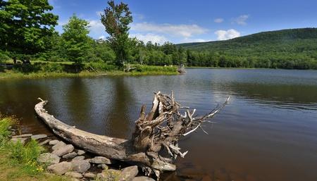 Natural reflections on Colgate lake at Catskill mountains, NY photo