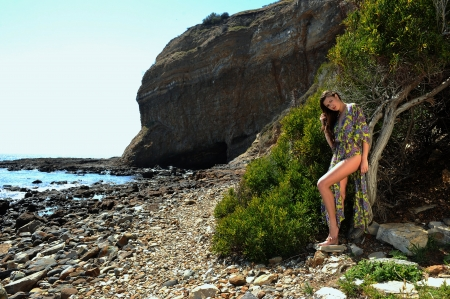 transparent dress: Model posing in transparent dress at oceanside CA location Stock Photo