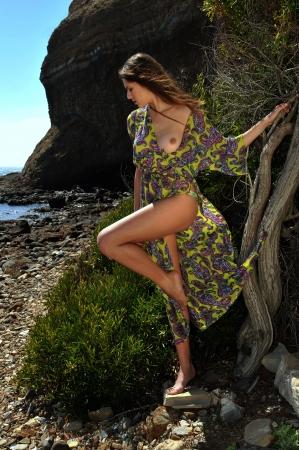 Model posing in transparent dress at oceanside CA location Stock Photo