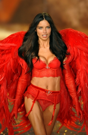 NEW YORK, NY - 13 novembre: Modello Adriana Lima cammina la pista al 2013 di Victoria Secret Fashion Show al Lexington Avenue Armory il 13 Novembre 2013 a New York City.