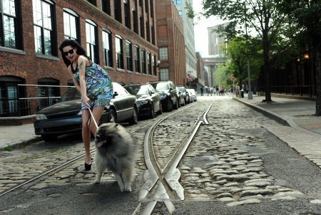 Young brunette holding dog at historical old tram rails at Dumbo area in Brooklyn NY photo