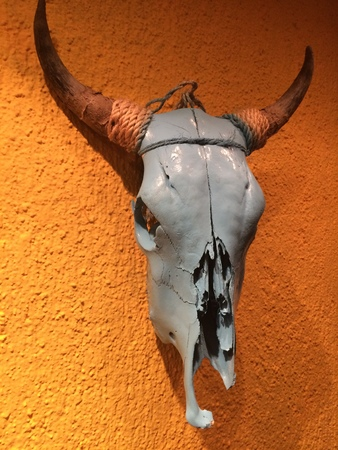 Bull scull at the wall in mexican restaurant photo