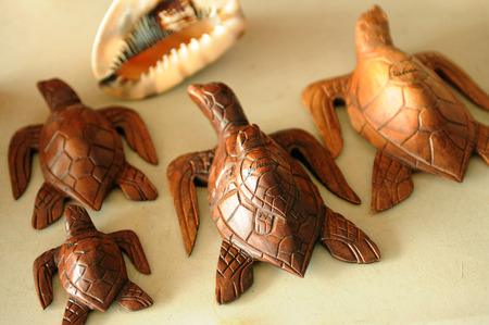 freeport: Souvenir wooden turtles Bamamas and shell