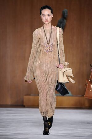 wen: PARIS, FRANCE - MARCH 4: Model Jing Wen walks runway at the Loewe show during Paris Fashion Week AutumnWinter 201617 on March 4, 2016 in Paris, France.