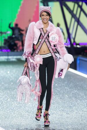 PARIS, FRANCE - NOVEMBER 30: Dilone walks the runway at the Victorias Secret Fashion Show on November 30, 2016 in Paris, France.