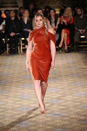 velvet dress: NEW YORK, NY - FEBRUARY 11: A model walks the runway for the Christian Siriano collection during, New York Fashion Week on February 11, 2017 in New York City.