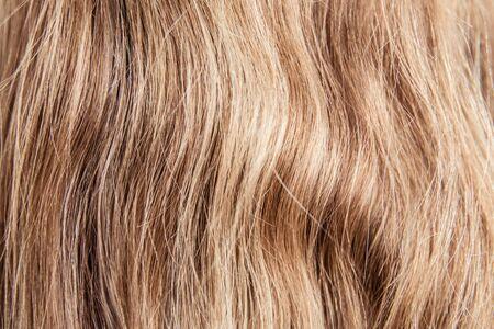 Healthy Brown Hair. hair. fair-haired hair color