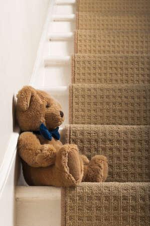 Teddybär Standard-Bild - 13860431