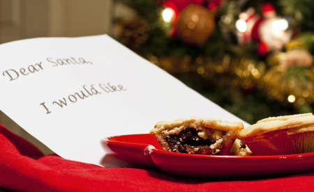 Mince pie for santa photo