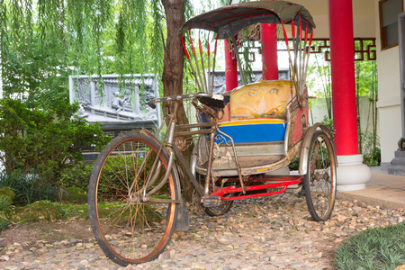 trishaw: tricycle in the public garden