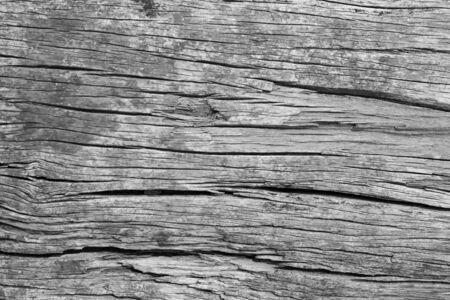 old, grunge wood panels used as background photo
