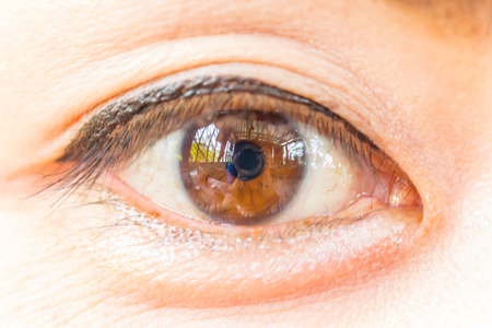 Close up picture of brown eyes from a young woman asia photo