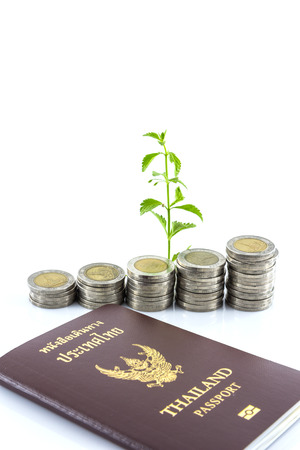trees growing on coins with passport, Money photo