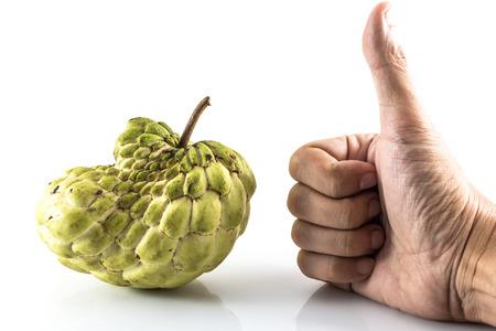 chirimoya: Hand like Sugar Apple ( custard apple, Annona, sweetsop,Cherimoya fruit )  on white background