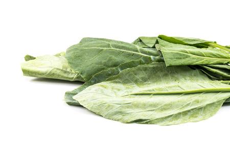 jhy: Fresh Green kale on a white  Stock Photo