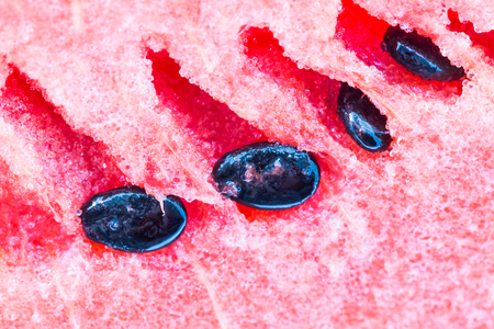 black seeds: Red watermelon flesh and black seeds on white background