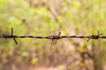 barbed wire fence: Barbed Wire Fence with rust and green bokeh for blackground Stock Photo