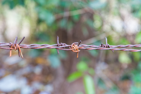 Barbed Wire Fence with rust and green bokeh for blackground photo
