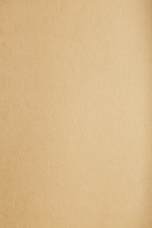 cardboard background: brown paper texture blank background for template