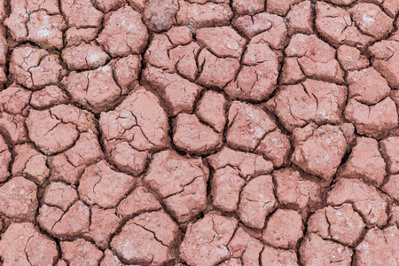 cracked earth: Dry cracked earth texture background Stock Photo