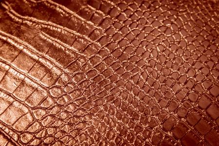 snake skin in black colour photo