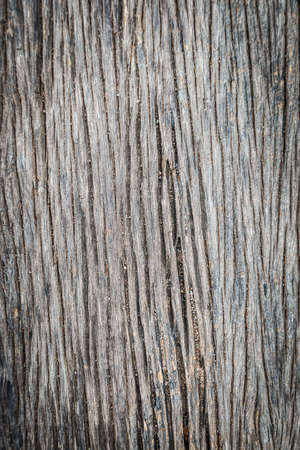 Old brown wooden texture background photo