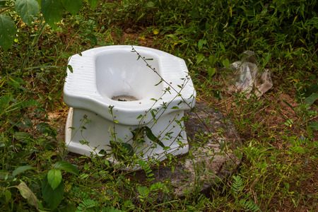 White Ceramic toilet in the woods nature photo