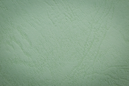 Light Green paper texture background photo