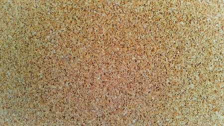 Corkboard Empty bulletin board background photo
