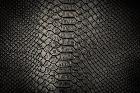 black snakeskin pattern texture background Reklamní fotografie - 42484408
