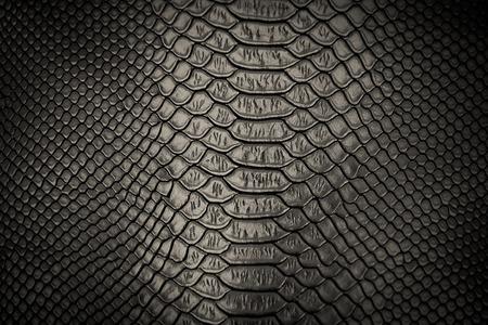 lagarto: de piel de serpiente negro patrón de textura de fondo Foto de archivo