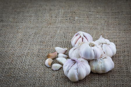 sackcloth: garlic on sackcloth background