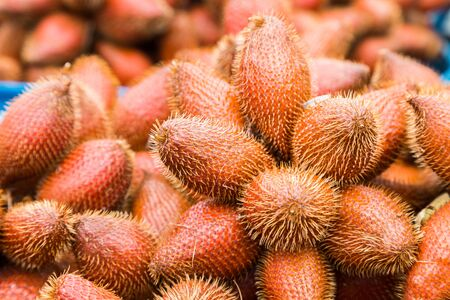 salak: Fresh red Salak fruit, Salacca zalacca nature background