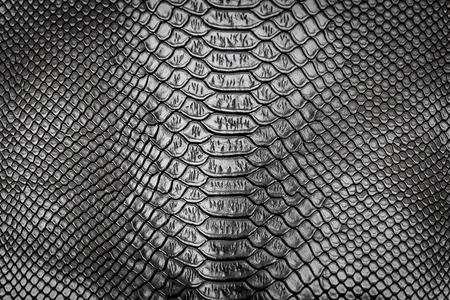 Zwarte slang huid patroon textuur achtergrond
