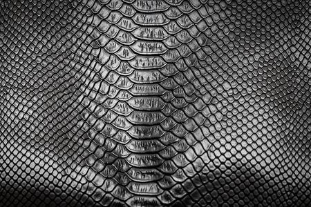 Black snake skin pattern texture background Stock Photo