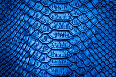 Serpiente azul patrón de piel de textura de fondo