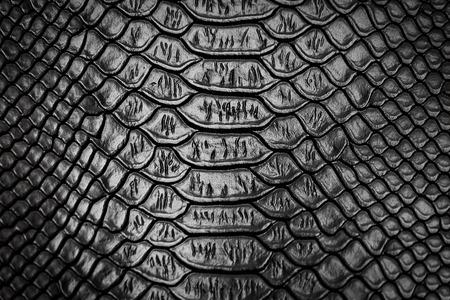 黒いヘビ皮パターン テクスチャ背景