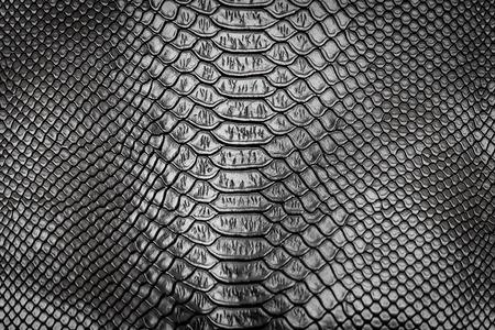 Black snake skin pattern texture background Фото со стока