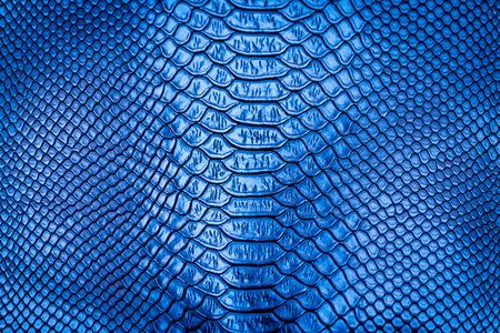 Blue snake skin pattern texture background