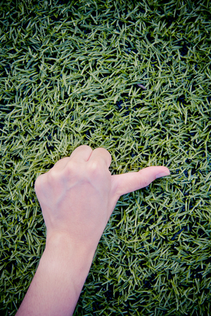 thump: Girl hand thump up on green grass background