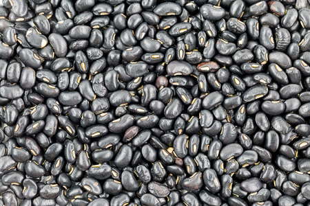 black beans: Row of black beans use for background