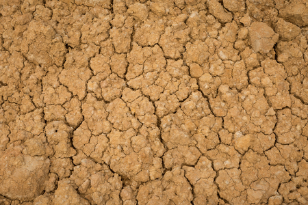dehydration: Cracked ground dry earth dry land texture background,Dehydration plants do not grow. Stock Photo