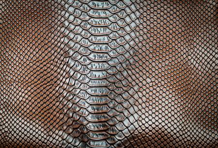皮膚革テクスチャ背景用 写真素材