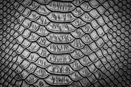 蛇肌テクスチャ背景用のクローズ アップ