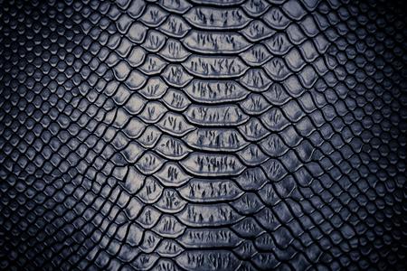 piel: close up de la serpiente utilizaci�n textura de la piel para el fondo Foto de archivo