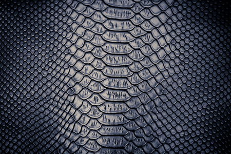 black leather texture: close up of snake skin texture use for background