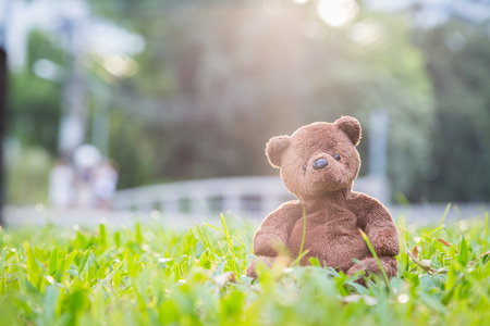 soul mate: Brown bear doll sitting alone on the lawn background Stock Photo