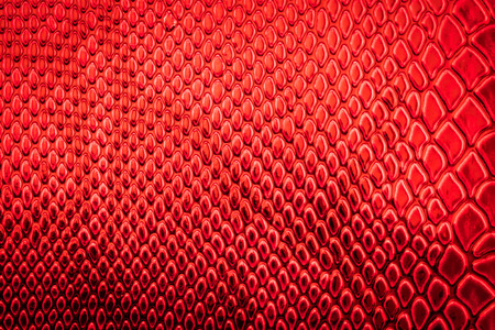 red wallpaper: Red exotic Snake skin pattern as a wallpaper