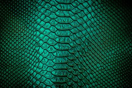 Close up von grünen Luxus Schlangenhaut-Textur für Hintergrund